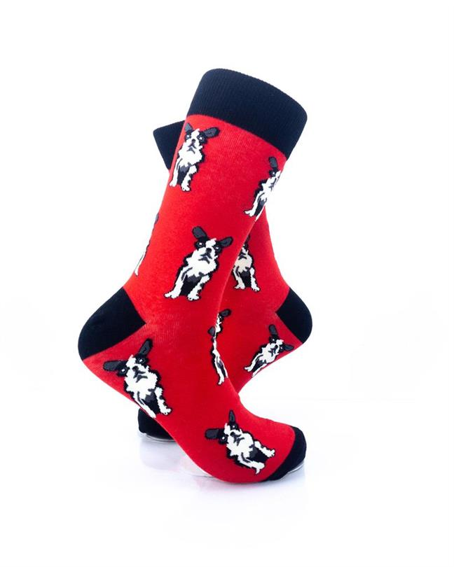 cooldesocks boston terrier crew socks right view