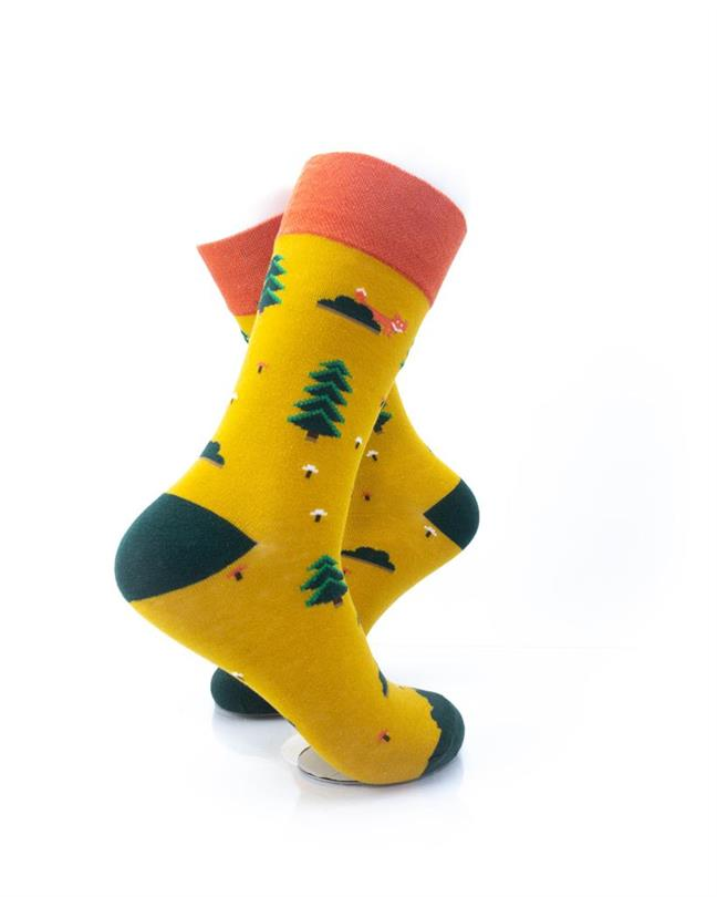 CoolDeSocks Camping Ground Socks right view image