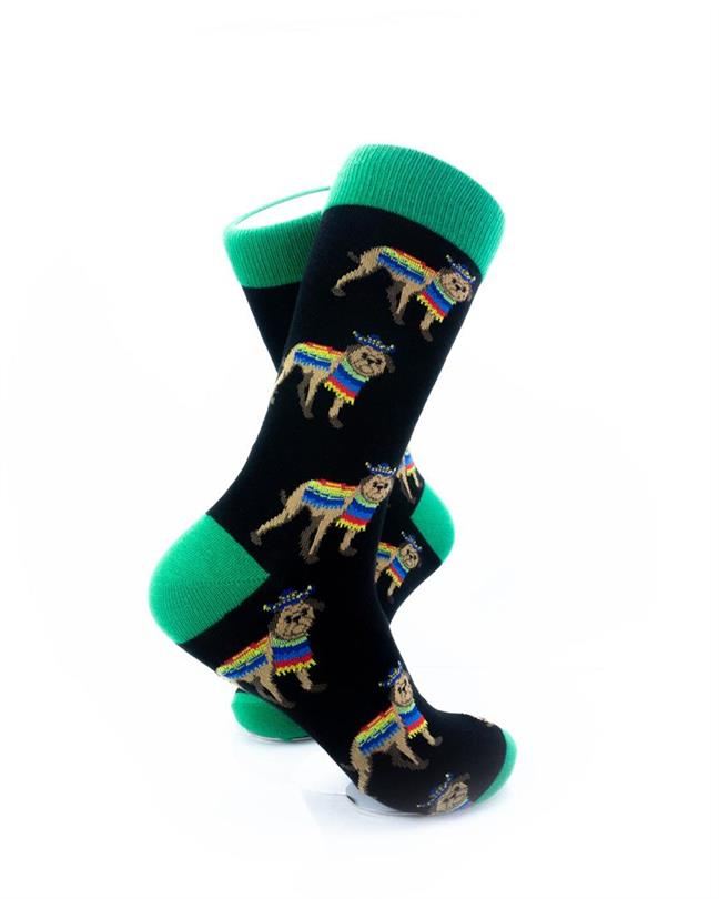 CoolDeSocks Dog Poncho Green Socks right view image