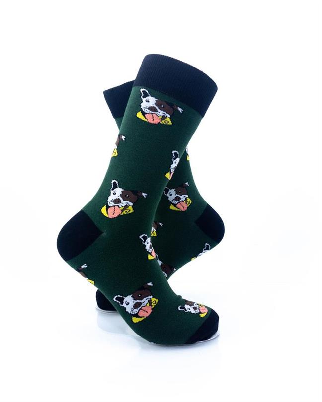 CoolDeSocks Pitbull Puppies Socks right view image