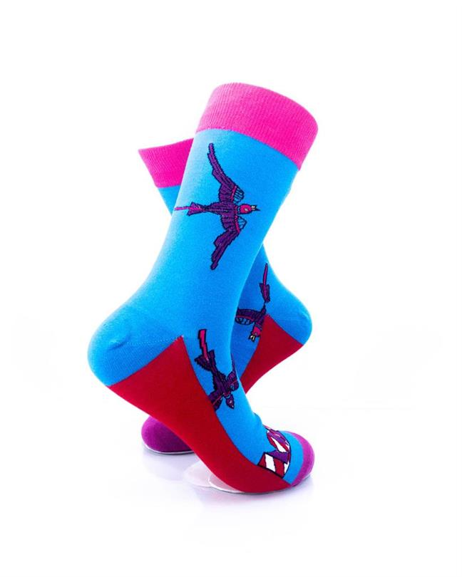 CoolDeSocks Swallow Love Socks right view image