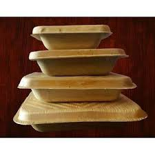 Areca leaf food container with lid