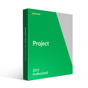 Microsoft Microsoft Office Project Professional 2013