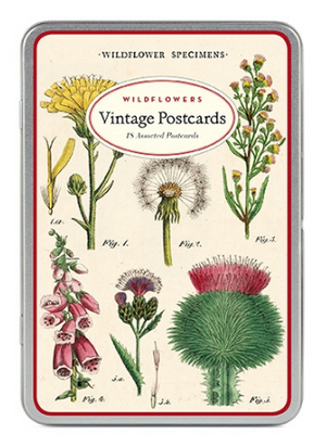 Wildflowers Postcards