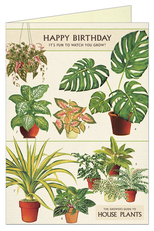 Happy Birthday House Plant Card by Cavallini