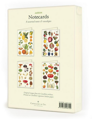 Jardin Boxed Note Cards