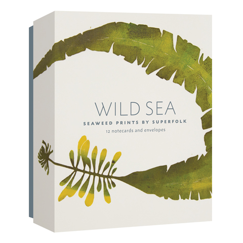 Wild Sea Notecards Box Set