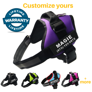 Lifetime Warranty Personalized MyDogName™️ NO PULL Harness - FREE SHIPPING