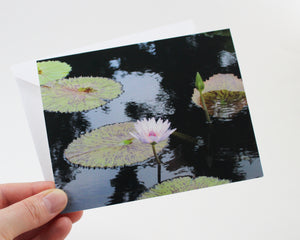 Water Lily Notecards - Set of Five