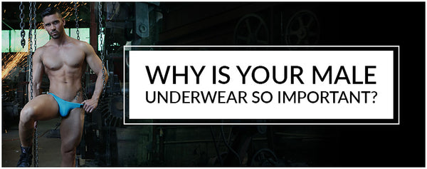 Why is your Male Underwear so important?
