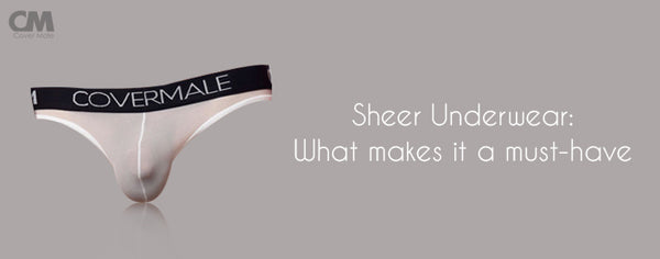 What's with Men's Sheer Underwear?