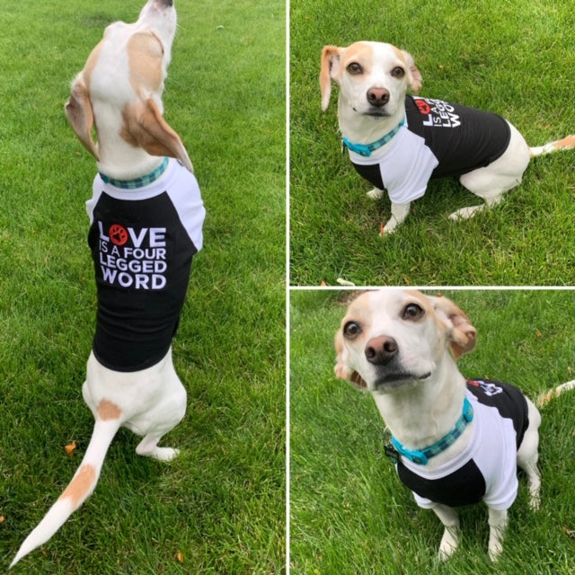 """Love is a Four Legged Word"" Dog T-Shirts"