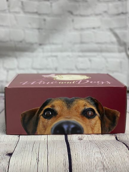 Wine and Dogs Subscription Box-SPRING