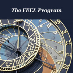 The FEEL Program