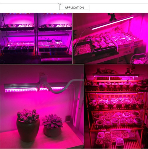 LightingWill 10Pcs 1/2/3/4 feet LED Tube T5 Grow Light Red/Blue Spectrum (R:B=5:1) Clear Lens for Indoor Plant Veg and Flower Hydroponic Greenhouse Growing Bar Light