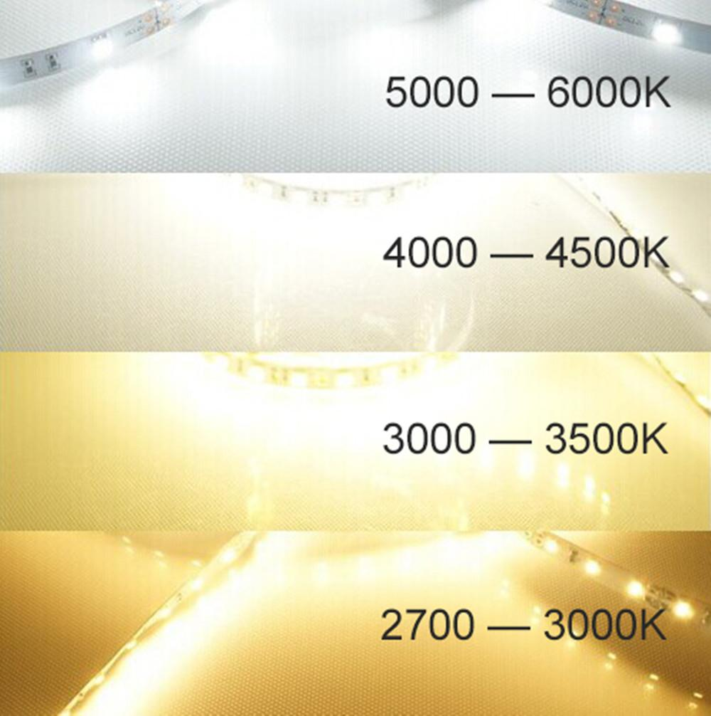 DC 12V Dimmable SMD3528-600 Flexible LED Strips 120 LEDs Per Meter 8mm Width 600lm Per Meter