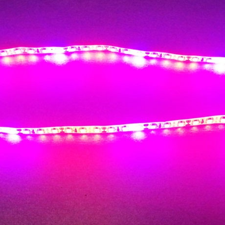 LightingWill 5M(16.4feet) IP65 Waterproof Plant Growth LED Grow Light RED:BLUE /660nm:460nm DC12V SMD2835 LED Light Strip