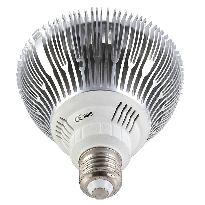 12W (12x1W) PAR38 LED Lamp with E27 Edison Screw Base 100-240V AC Silver Housing Indoor Type
