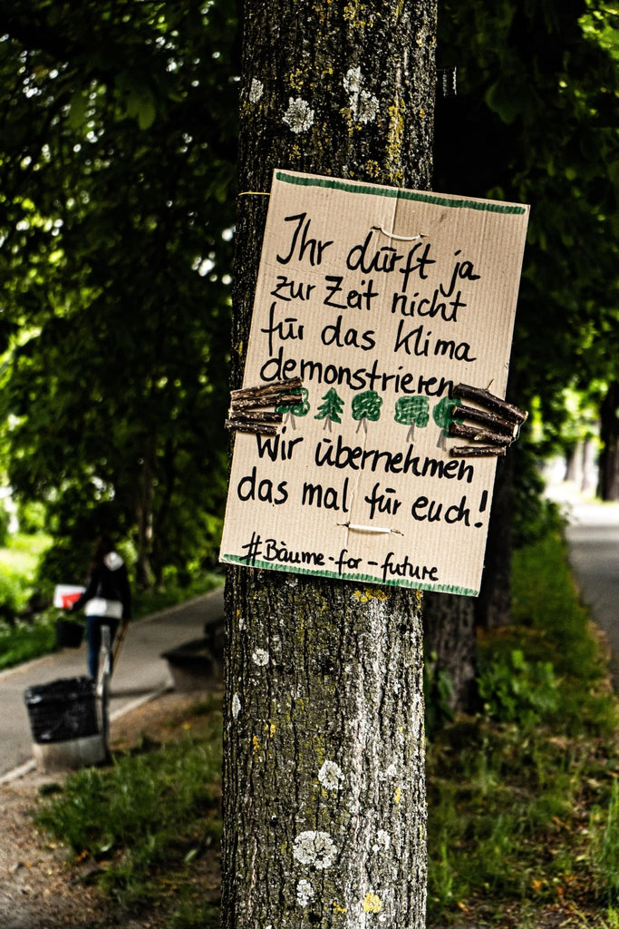 Demonstrationen in Corona Zeiten | Baum mit Pappschild demonstriert | Pappschild Demo Schild
