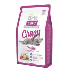 Brit Crazy Kitten - Gatito