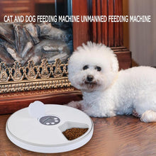 Load image into Gallery viewer, Automatic Pet Feeder Timing Feeder 6 Meals 6 Grids Cat Dog Electric Dry Food Dispenser Dish Feed 24 Hours Timer Pet Supplies New