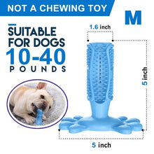 Load image into Gallery viewer, Pet Dog Toothbrush Chew Toy Doggy Brush Stick Soft Rubber Teeth Cleaning Dot Massage Toothpaste for Small dogs Pets Toothbrushes - Petgo Wholesale