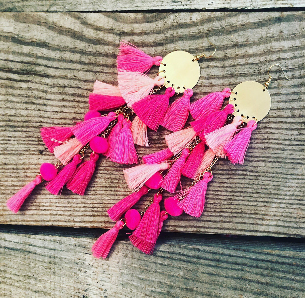 Pink Shades Tassel Earrings