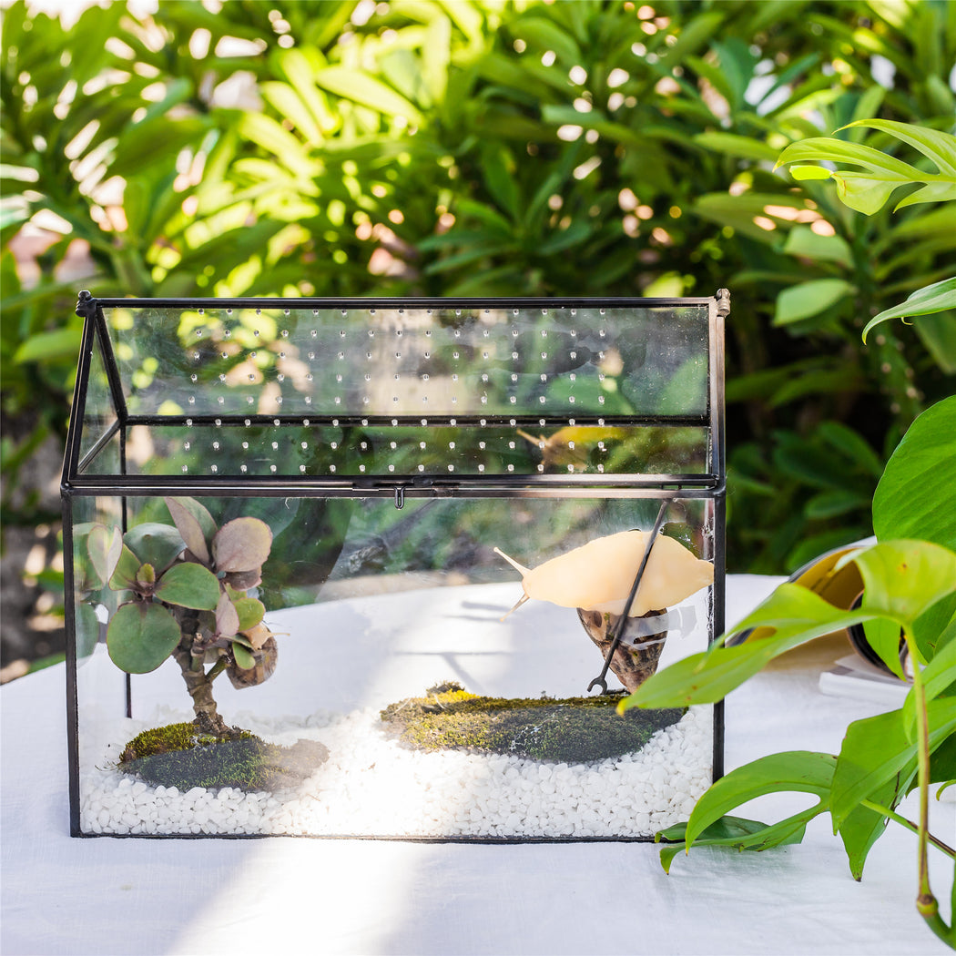 NCYP Handmade Large House Shape Tabletop, Swing Lid Latch Geometric Glass Terrariumn Box - NCYPgarden
