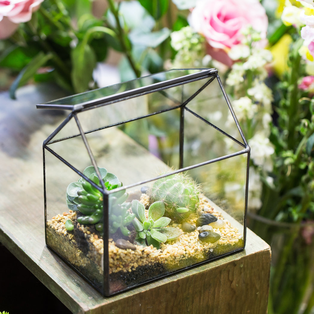 NCYP Vintage House Geometric Terrarium Tin Sealed Chest Planter Succulent Centerpiece Wedding - NCYPgarden