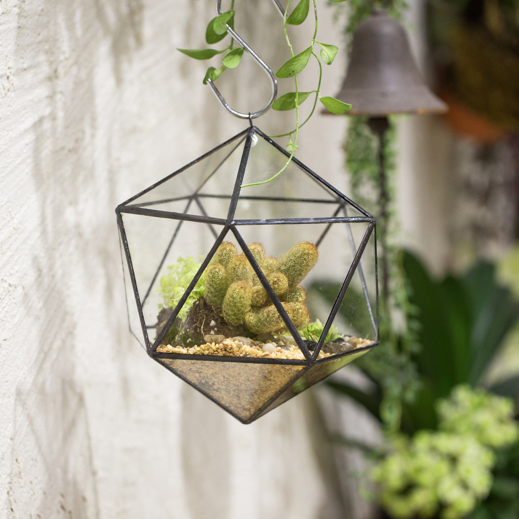 NCYP Wall Hanging Glass Geometric Terrarium Modern Handmade Planter Tabletop Balcony Landschaft Flower Pot Air Plants Holder Display Container - NCYPgarden