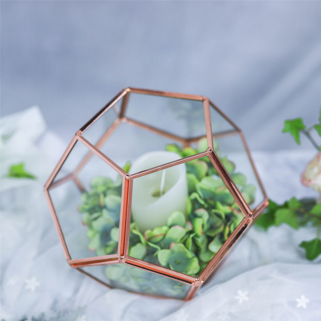 Glass Pentagon Regular Dodecahedron Geometric Terrarium Container Desktop Planter for Succulent - NCYPgarden