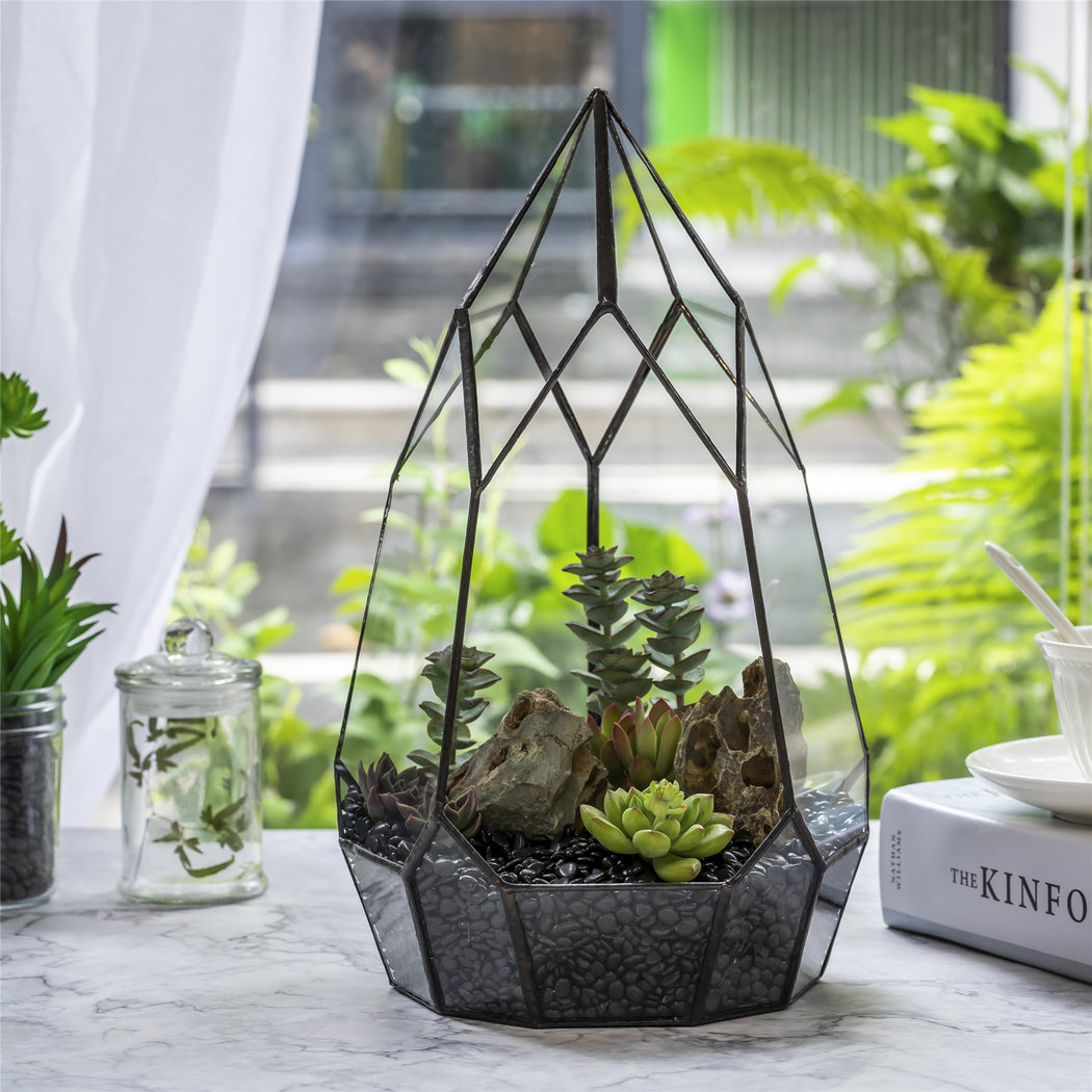 NCYP Irregular Open Geometric Glass Terrarium for Succulents Planter Pot Dessert Landscape Bonsai - NCYPgarden