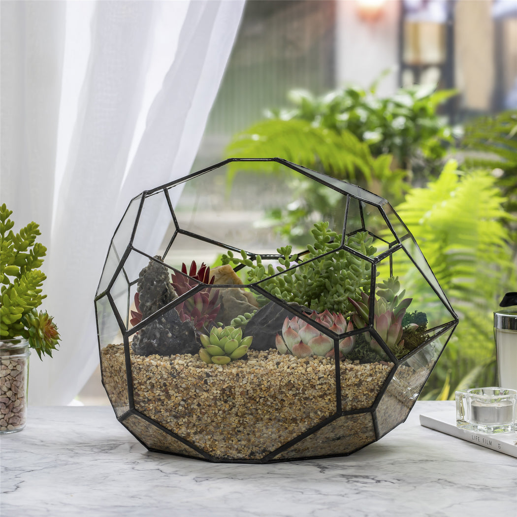 NCYP Irregular Open Geometric Glass Terrarium Bubble Shape for Succulents Landscape Bonsai - NCYPgarden