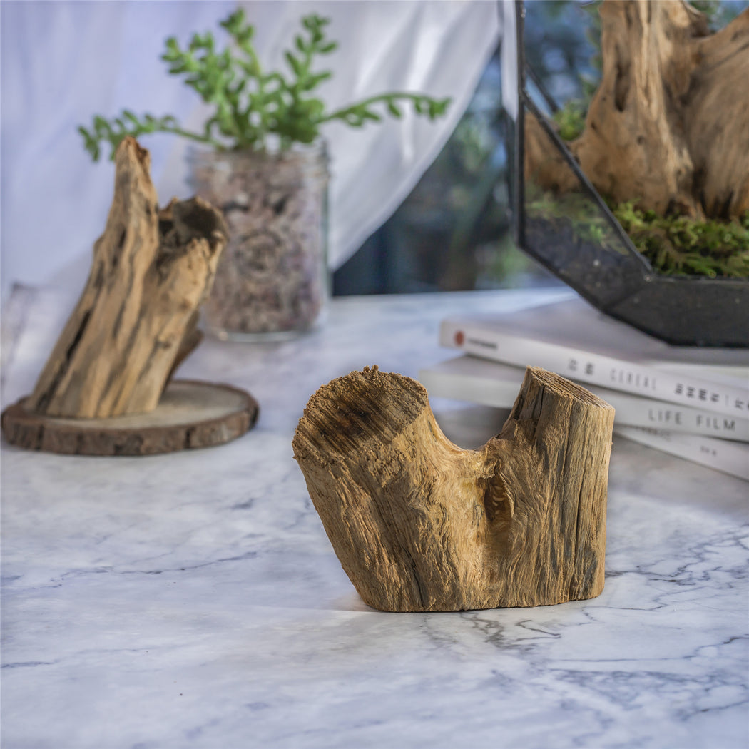 Small Natural Driftwood Bogwood Blocks for Flowerpot LandscapingDesign Air Plants Reptile Habitat - NCYPgarden
