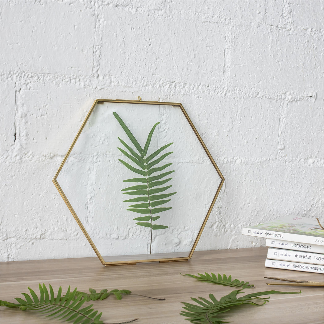 Hanging Hexagon Herbarium Brass Glass Frame for Pressed Flowers Dried Flowers Floating Frame - NCYPgarden