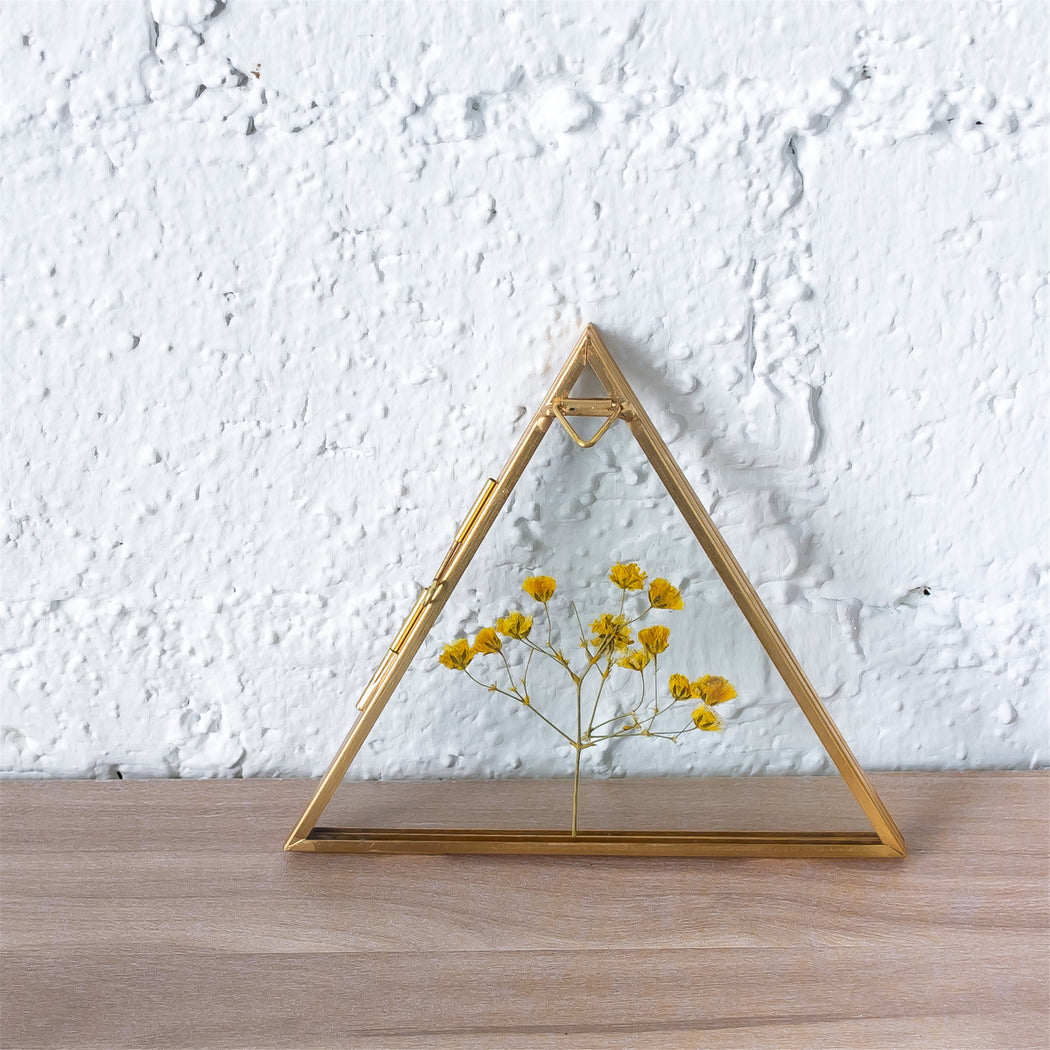 Hanging Triangle Herbarium Brass Glass Frame for Pressed Flowers Dried Flowers Poster - NCYPgarden