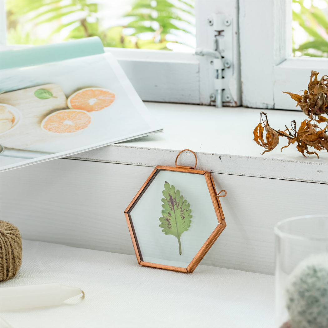 Hanging Small Pink Hexagon Herbarium Copper Glass Frame for Pressed Flowers Dried Flowers - NCYPgarden