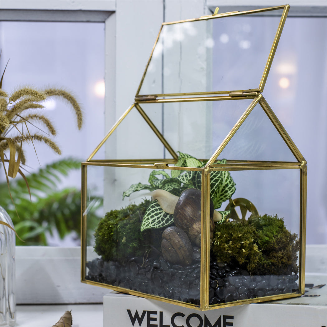 Handmade NCYP Geometric Glass Gold Terrarium Box House Shape, Close, Tabletop, Swing Lid for Air Plants Moss Snail Reptile Habitat - NCYPgarden