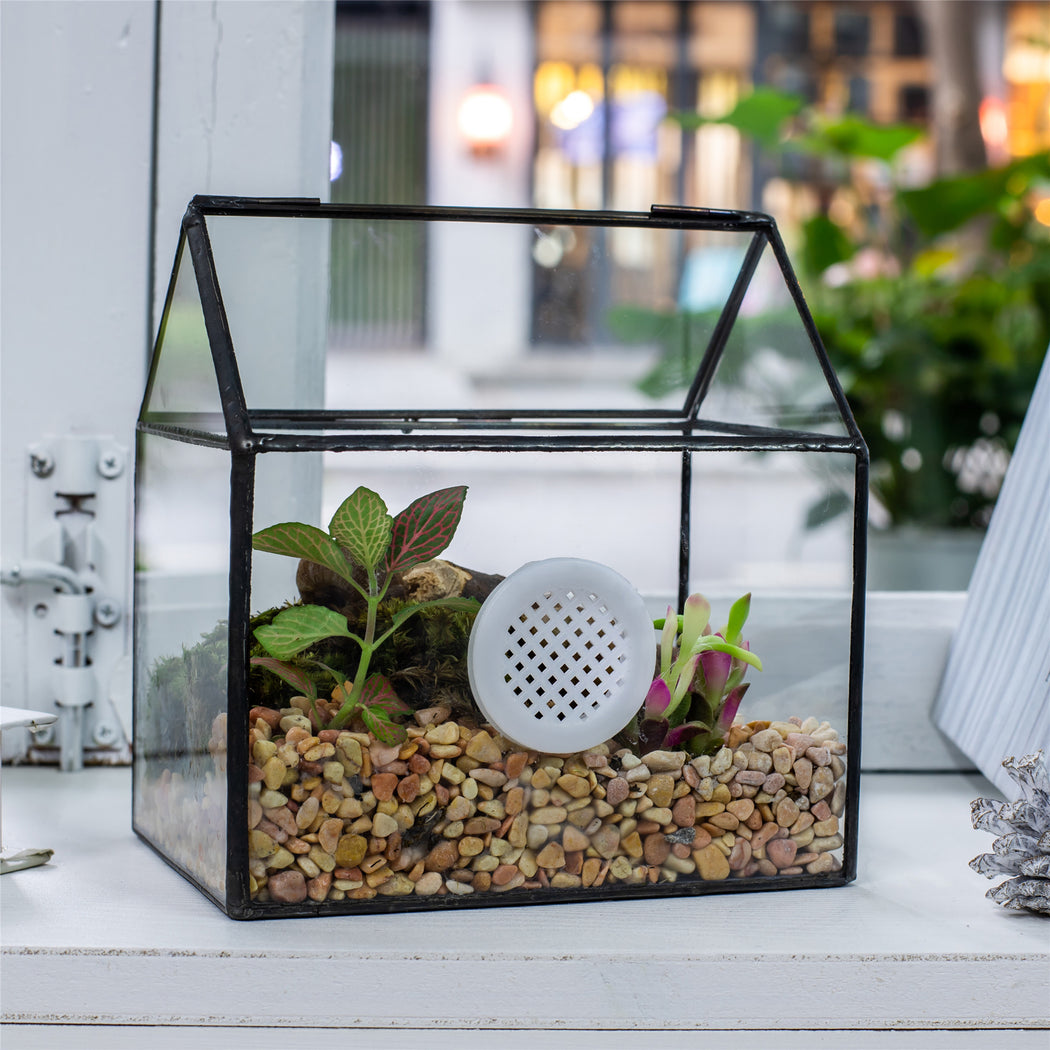Handmade NCYP Geometric Glass Black Terrarium Box House Shape Close, Tabletop, Swing Lid  for Air Plants Moss Snail Reptile Habitat - NCYPgarden