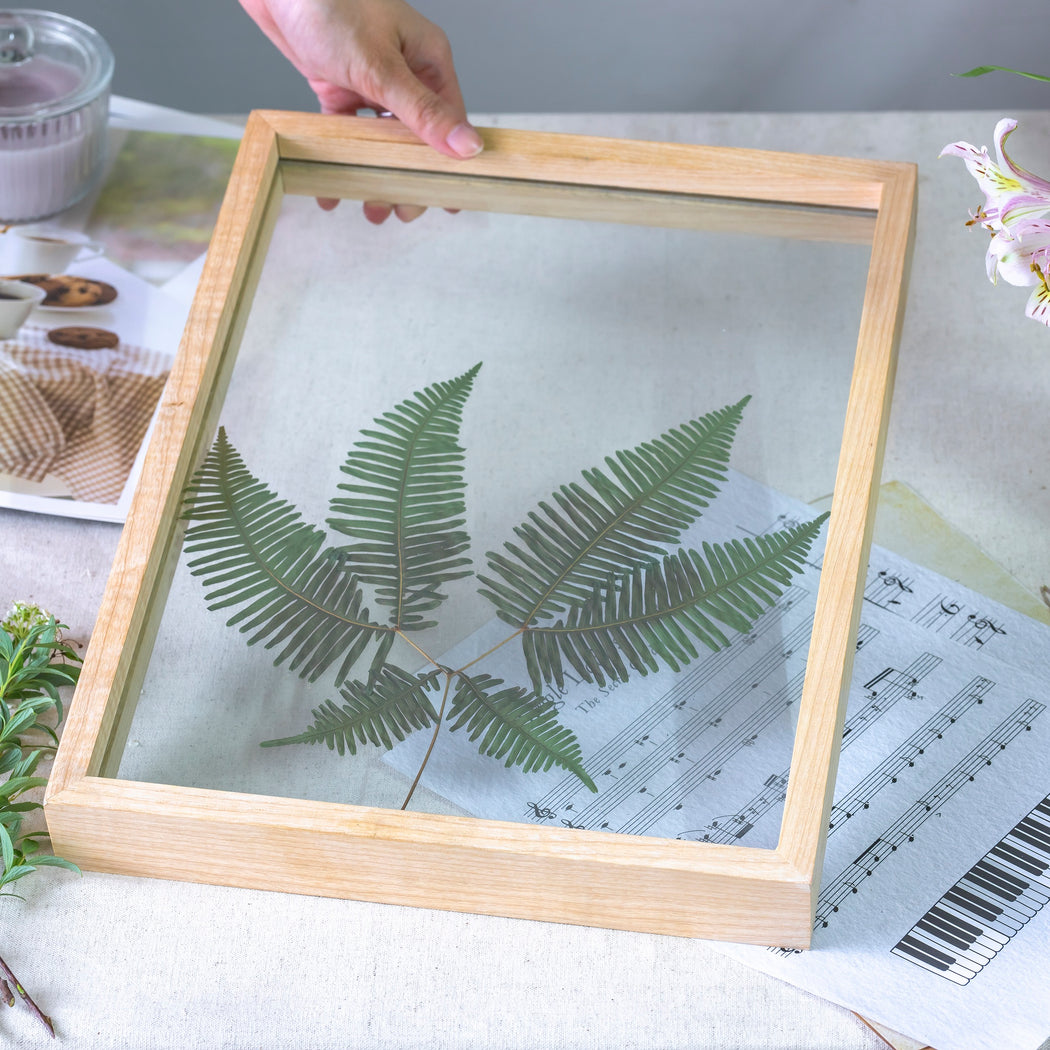 NCYP Handmade Tabletop Wall Hanging Natural Wood Tempered Glass Acrylic Panel Floating Frame - NCYPgarden