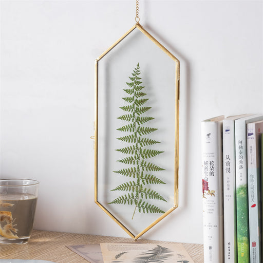 NCYP Vintage Brass Copper Floating Hanging Glass Long Hexagon Picture Photo Frame for Fern, Pressed Flower, Specimen - NCYPgarden