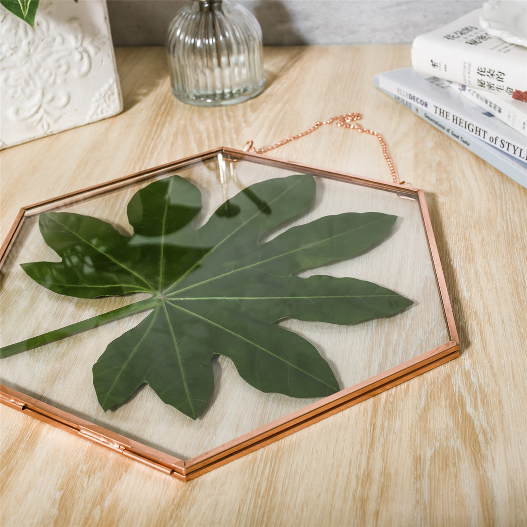 Hanging Hexagon Herbarium Copper Glass Frame for Pressed Flowers Dried Flowers Floating Frame - NCYPgarden