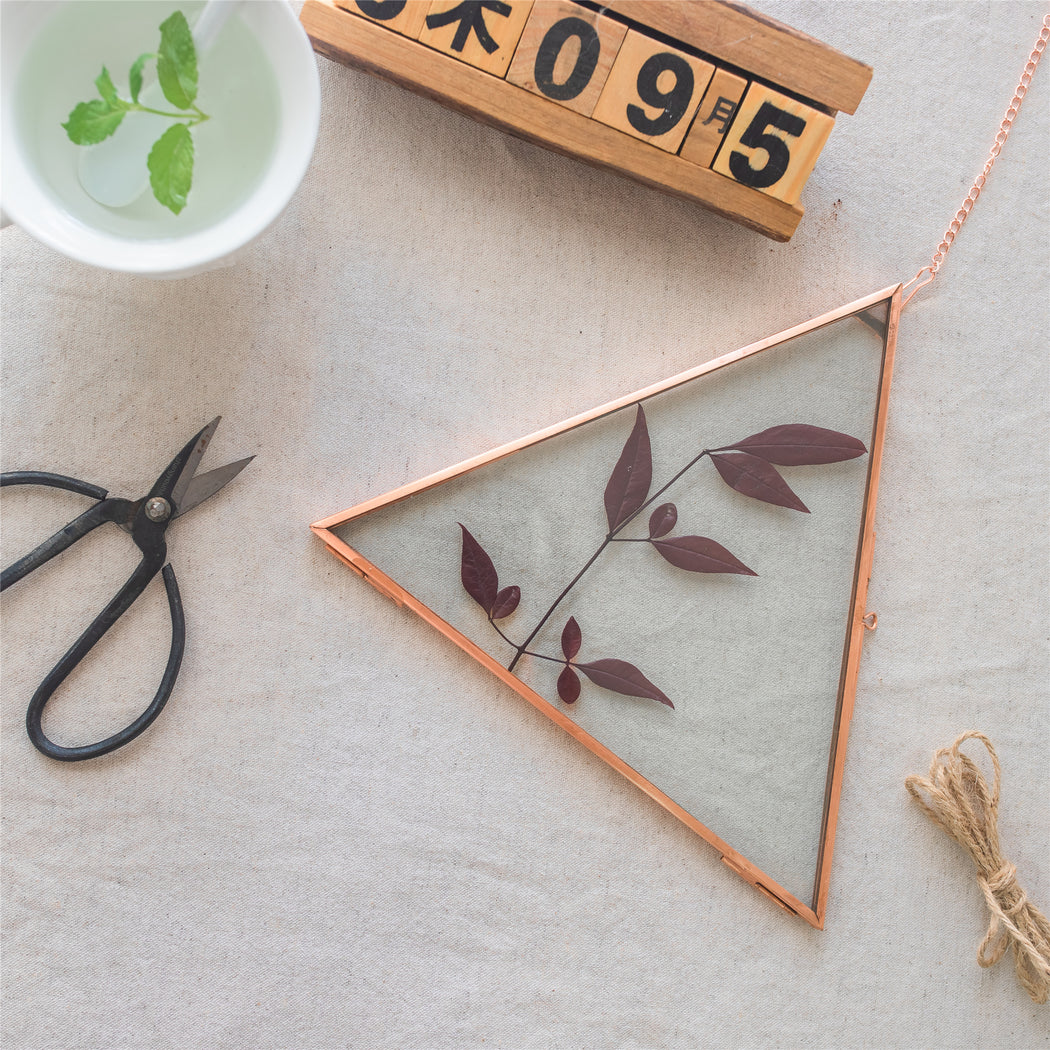 Hanging Triangle Herbarium Copper Glass Frame for Pressed Flowers Dried Flowers Poster - NCYPgarden