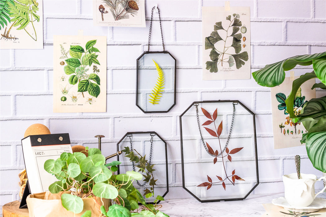 Wall Hanging Black Long Octagon Herbarium Brass Glass Frame for Pressed Flowers Dried floating Frame - NCYPgarden