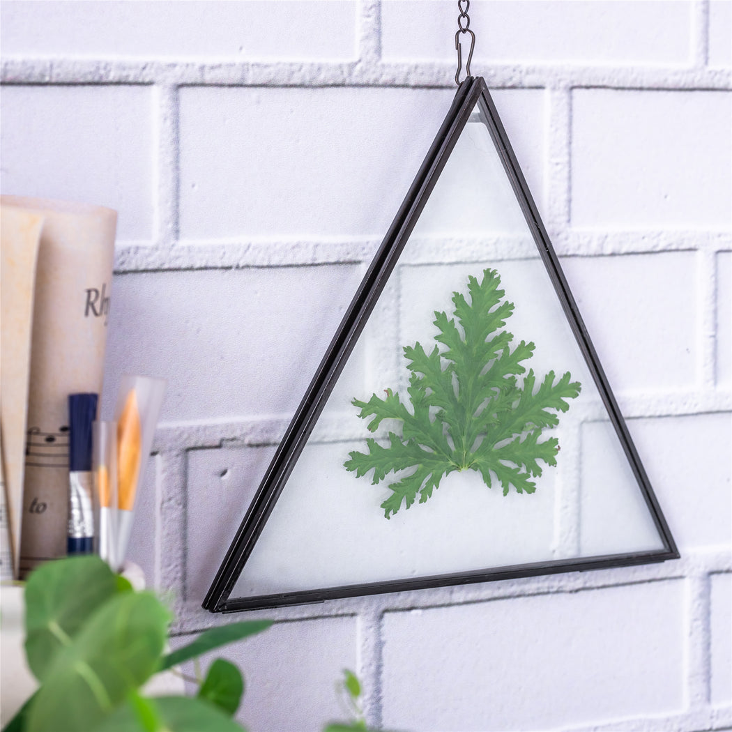 Hanging Black Triangle Herbarium Brass Glass Frame for Pressed Flowers Dried Flowers Poster - NCYPgarden