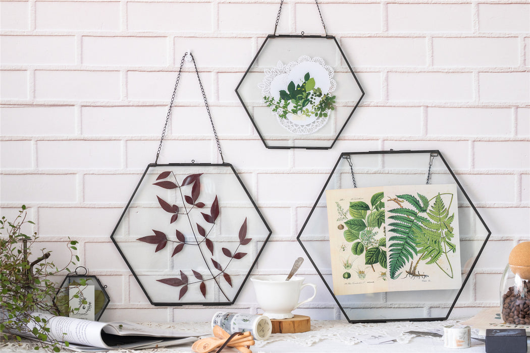 Hanging Black Hexagon Herbarium Brass Glass Frame for Pressed Flowers Dried Flowers Floating Frame - NCYPgarden