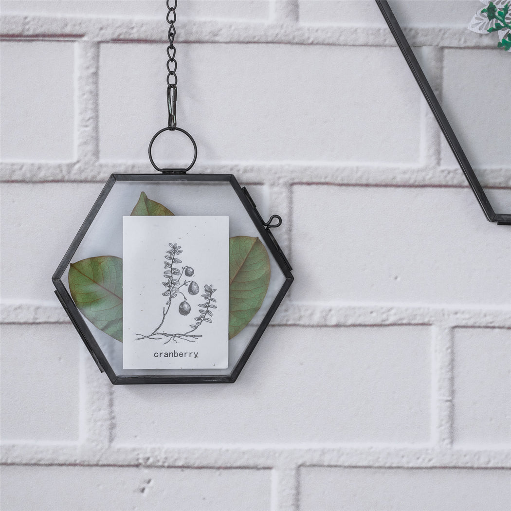 "Handmade Black Vintage Brass Floating Hanging Glass Hexagon Picture Photo Frame Small Side Length 2"" - NCYPgarden"