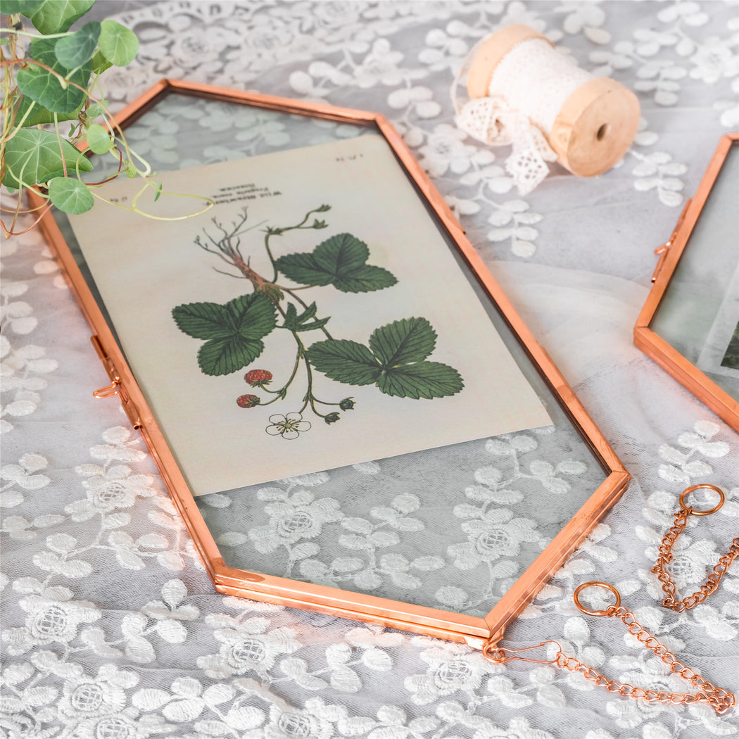 NCYP Vintage Rose Gold Copper Floating Hanging Glass Long Hexagon Frame for Fern, Pressed Flower - NCYPgarden
