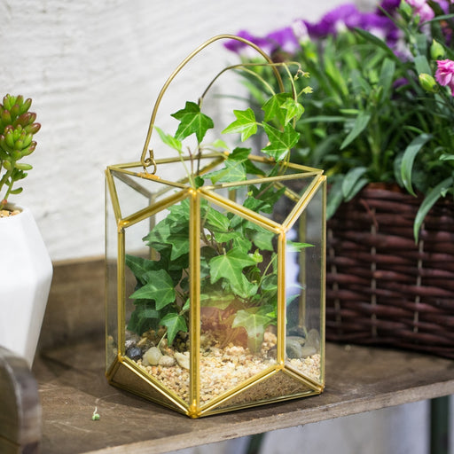Handmade Hanging Copper Gold Echelon Geometric Glass Terrarium Lantern with Handle for Succulents - NCYPgarden