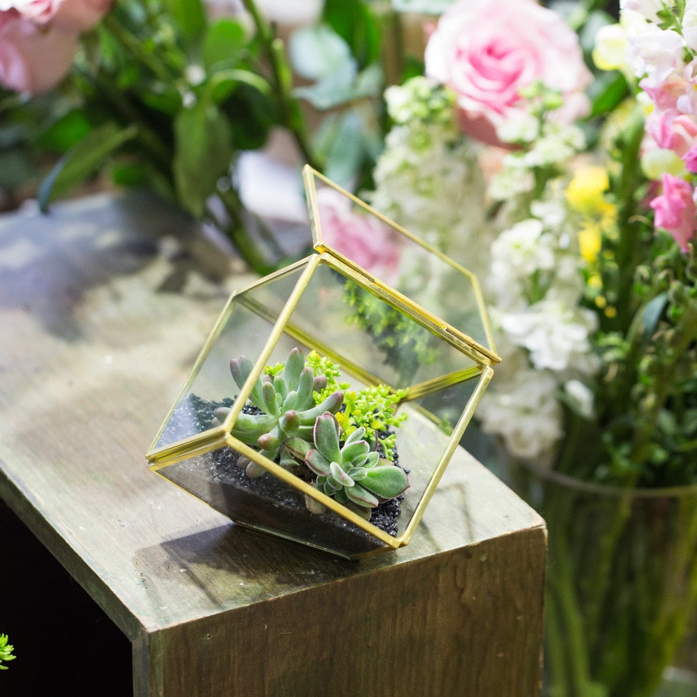 "Handmade 3.9"" Copper Square Inclined Cube Glass Geometric Terrarium Box with Door for Succulents - NCYPgarden"